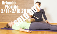 **SOLD OUT** VSA Singing Bowl Vibrational Sound Therapy Certification Course Orlando, Fl Feb 11-16 2018