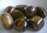 Tiger's Eye for Pet's Bed- For those that are Shy or Withdrawn