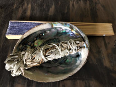 sage abalone kit with fan