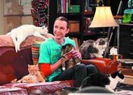 Big Bang Theory Season 3 & 4 Trading Cards T/C Box -- JUL121446
