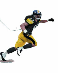 TMP Sports NFL Series 29 Polamalu Action Figure Case -- MAY121790