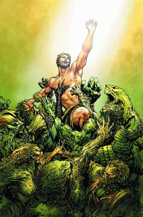 Swamp Thing #27 -- NOV130209