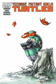 Teenage Mutant Ninja Turtles Ongoing #30 -- NOV130318
