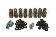 PAC GM LS-Series Competition Valve Spring Kit