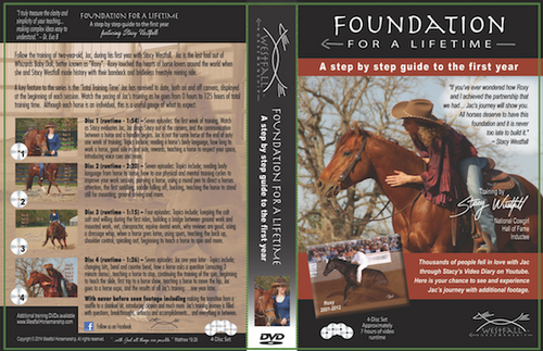 Foundation for a Lifetime DVD-4 Disk Set!