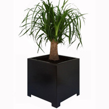 Alora Square Metal Outdoor Planter 18x18x18