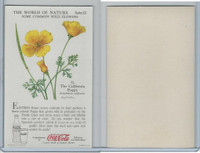 F213-3 Coca Cola, Nature Study, Wild Flowers, 1920's,  #11 Poppy