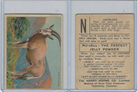 FC1, Harry Horne Co, Nu-Jell, Animals And Birds, 1925, Antelope