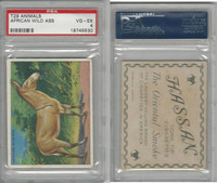 T29 Hassan Cigarettes, Animals, 1911, African Wild Ass, PSA 4 VGEX