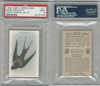 J9-6, Church & Dwight, Useful Birds 10th, 1925, #11 Swallow, PSA 9 Mint