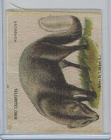 S15 American Tobacco Silk, Animals, 1910, Mongoose