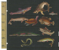 Victorian Diecuts, 1890's, Animals, Lot of 10 Sea Creatures, Fish, Sharks (11)