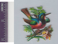 Victorian Diecuts, 1890's, Birds, Bird in Branches (38)