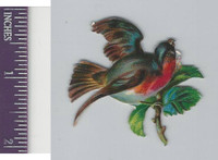Victorian Diecuts, 1890's, Birds, Bird in Branches (43)