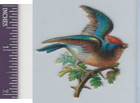 Victorian Diecuts, 1890's, Birds, Bird in Branches (45)