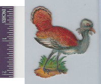 Victorian Diecuts, 1890's, Birds, Colorful Bird (56)