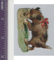 Victorian Diecuts, 1890's, Dogs, Puppy With Bow (4)