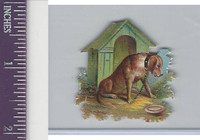 Victorian Diecuts, 1890's, Dogs, Dog House (5)