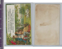 Victorian Card, 1890's, Appleton, Nathaniel, Monkey, Geese, Park Bench