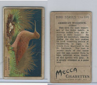 T42 American Tobacco, Birds, 1910, American Woodcock