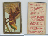 T42 American Tobacco, Birds, 1910, Bird of Paradise (Gold)