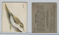 V339-2 Parkhurst, Audubon Society Birds, 1952, #34 Brown Creeper