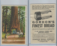 D39-7, Gordon Bread, Natures Splendor, 1940's, Big Trees