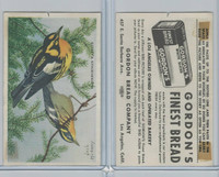 D39-11 Gordon Bread, Bird Pictures, 1950, Blackburnian Warbler
