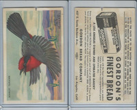 D39-11 Gordon Bread, Bird Pictures, 1950, Scarlet Tanager