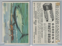 D39-13 Gordons Bread, Denizens Of Deep, 1950's, Blue-Fin Tuna Fish