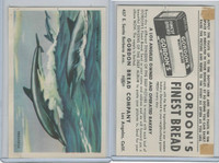 D39-13 Gordons Bread, Denizens Of Deep, 1950's, Porpoise