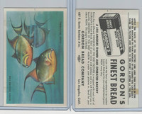 D39-13 Gordons Bread, Denizens Of Deep, 1950's, Queen Trigger Fish
