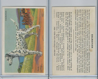F273-6 Kellogg, Dog Pictures, 1940's, Dalmatian