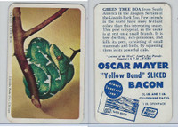 F333 Jewel, Animal Of The Week, 1956, Green Tree Boa
