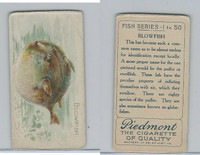 T58 American Tobacco, Fish, 1910, Blowfish