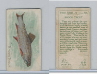 T58 American Tobacco, Fish, 1910, Brook Trout