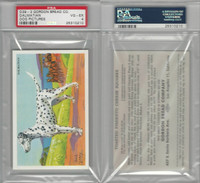 D39-3, Gordon Bread, Recipe - Dogs, 1940's, Dalmatian, PSA 4 VGEX