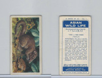 B0-0 Brooke Bond Tea, Asian Wild Life, 1962, #1 Tupai or Tree Shrew