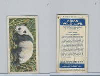 B0-0 Brooke Bond Tea, Asian Wild Life, 1962, #20 Giant Panda
