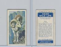 B0-0 Brooke Bond Tea, Asian Wild Life, 1962, #30 Argali