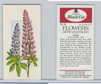 C18-0 Carreras, Flowers All Year Round, 1977, #22 Lupin