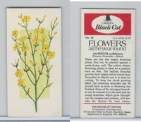 C18-0 Carreras, Flowers All Year Round, 1977, #46 Jasminum