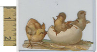 Victorian Diecuts, 1890's, Birds, Chickens, Chicks, Egg (81)