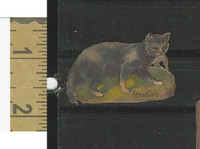 Victorian Diecuts, 1890's, Cats, Frienship, Cat With Mouse (5)