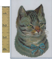 Victorian Diecuts, 1890's, Cats, Head, Blue Ribbon (22)