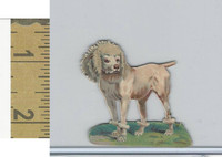 Victorian Diecuts, 1890's, Dogs, (17)