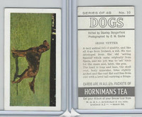 H0-0 Hornimans Tea, Dogs, 1961, #10 Irish Setter