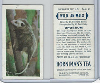 H0-0 Hornimans Tea, Wild Animals, 1958, #2 Opossum