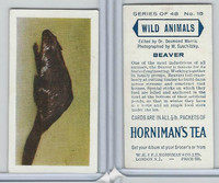 H0-0 Hornimans Tea, Wild Animals, 1958, #19 Beaver