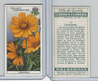 P72-139 Player, Garden Flowers, 1933, #14 Coreopsis
